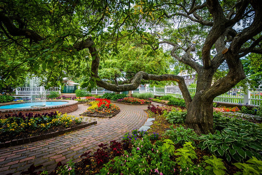 Gardens at Prescott Park in Portsmouth New Hampshire